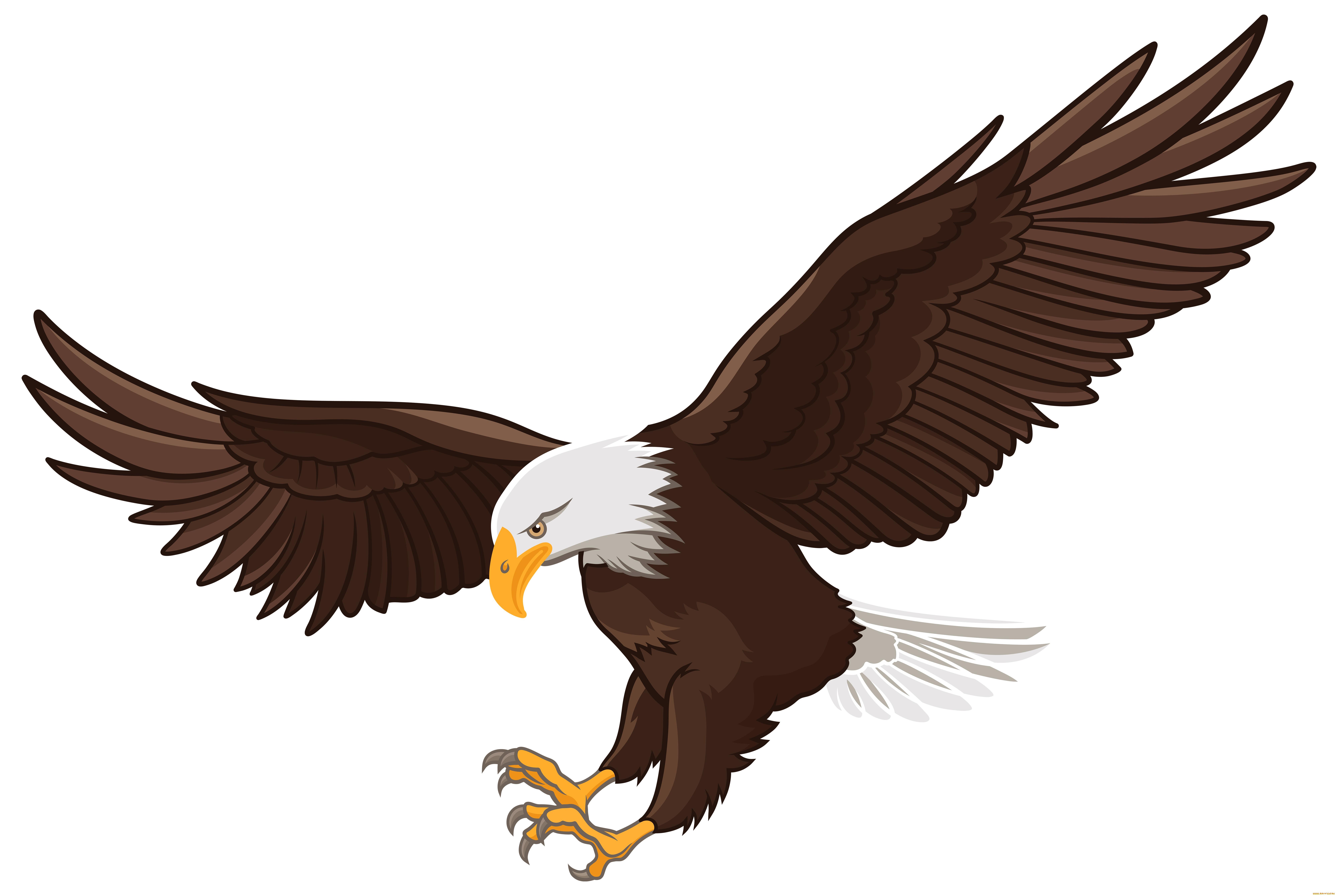 орел картинка мультяшная данный момент